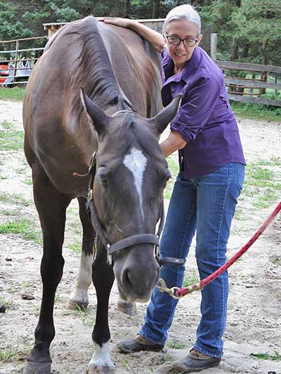 Horses - Craniosacral Therapy with Karen Partisch